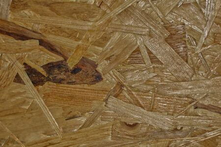 texture background wood