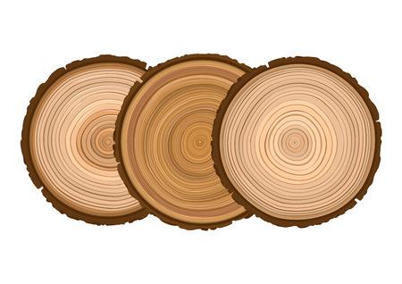 drie textuur van gezaagd hout bruin object boom vector