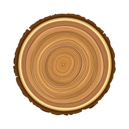 texture du vecteur d'arbre objet brun bois scié