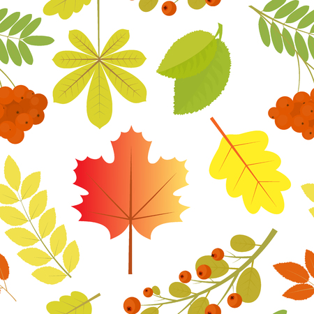 Seamless pattern of autumn leaves and berries. All elements are croppedVector background