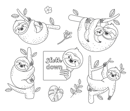 Set of cute outline doodle sloths sitting on a branch. Vector illustration. Coloring pages.Isolated on white background
