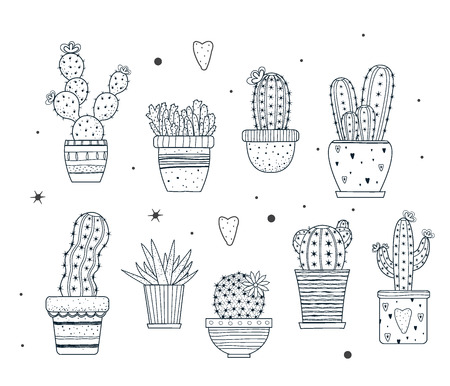 A set of cacti outline doodle cactus with hand drawn elements and pattterns. Vector illustration