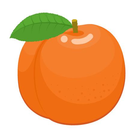 Orange peach with green leaf. Ripe fruit. Vector illustration