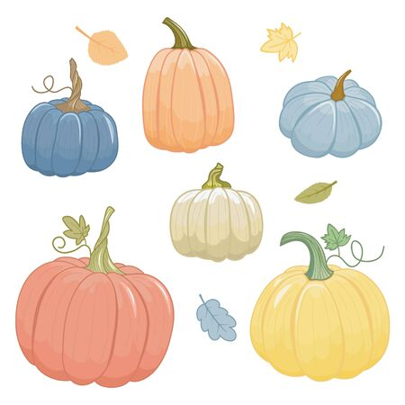 Collection of autumn pumpkins. Cartoon style. Isolated on white background.Vector illustration