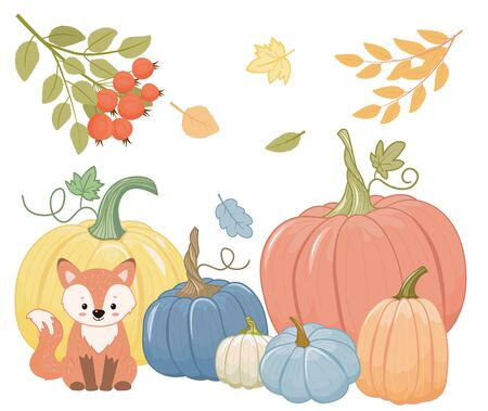 Collection of pumpkins, yellow,blue and orange. Cartoon style. Isolated on white background.Vector illustration