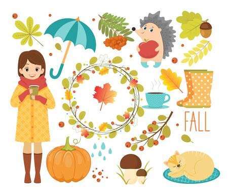 Autumn vector set with forest leaves. 向量圖像