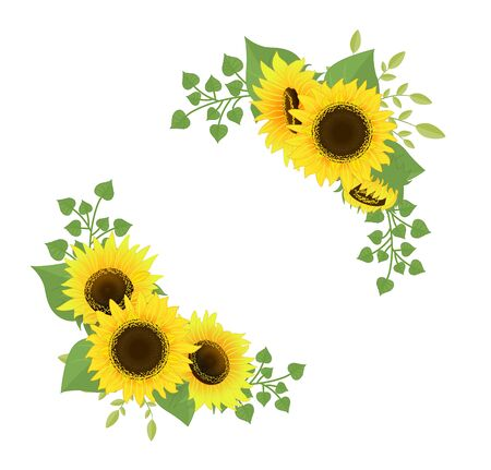 Cartoon sunflower bouquet vector.Isolated on white background.