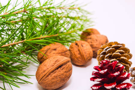 holiday decoration  with nuts and cones photo