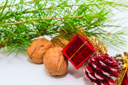 holiday decoration  with nuts and cones Stock Photo - 16452357