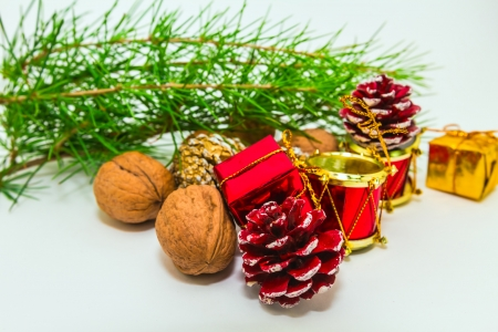 holiday decoration  with nuts and cones Stock Photo - 16452350