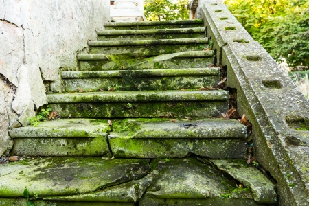 Moss overgrown and covered stone steps ascending. photo