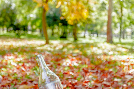 Empty transparent bottle on the autumn background, beautiful landscape photo
