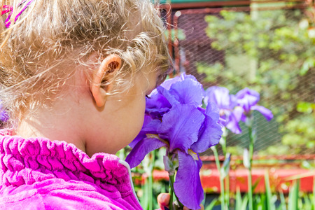 Young girl enjoying to play with a Iris flower