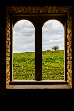 looking through frame: View through a window arched stone and brick along the rows of a vineyard at the evening.