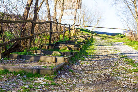 rudimentary: Stairway to the forest exit, hike in nature Stock Photo
