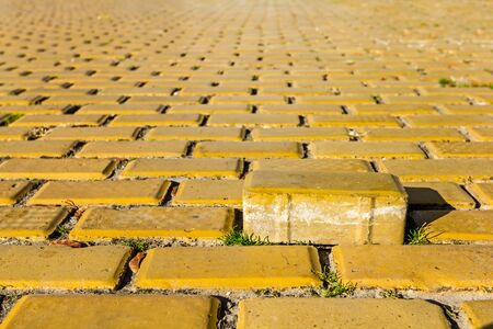 path to wealth: Brick representing the concept of standing out from the crowd Stock Photo