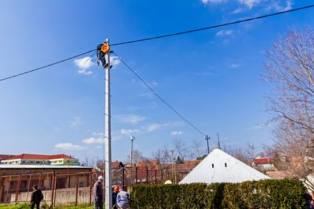 tree services company: Technician works high up on a power pole