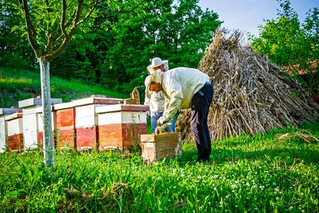 Two beekeepers are on spring checking of all details in their apiary. photo
