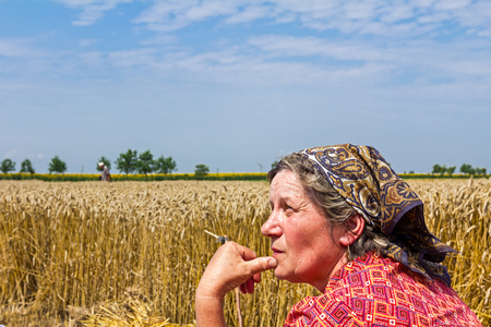 Woman at farm is looking a field of mature wheat. Stock Photo