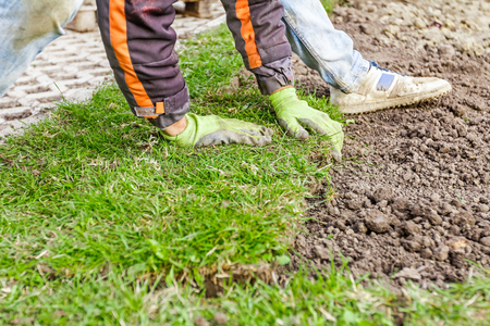 turf pile: Man is unrolling laying sod for new garden lawn at a residential construction site. Stock Photo