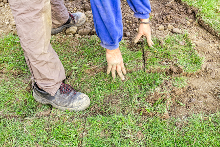sod: Man is unrolling laying sod for new garden lawn at a residential construction site. Stock Photo