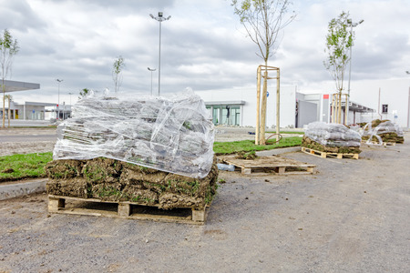 turf pile: Stack of turf grass rolls for a lawn piled on wooden pallet.