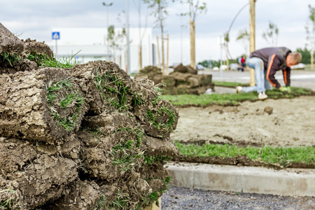 sod: Stack, heap of sod rolls on wooden pallet for installing new lawn, unrolling grass.
