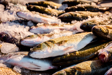Pile of fresh branzino, sea perch, Mullet, fish for sale on the fishmonger, outdoor seafood market.