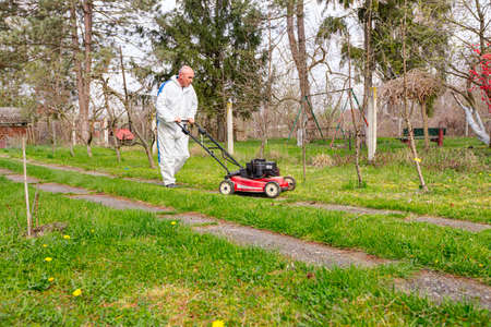 Gardener wearing protective overall is cutting grass in his yard with motor lawn mower among fruit trees.