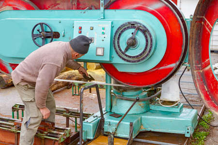 Worker at the outdoor carpentry regulate large industrial band saw for wood processing.