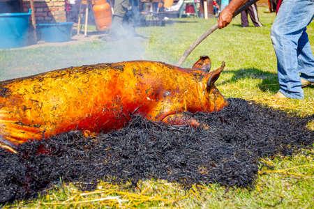Butchers are burning pile of straw for removing hair from the pig's skin at outdoor butchery.