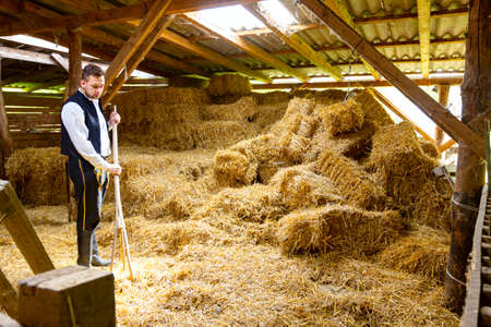Ivanovo, Vojvodina, Serbia - April 17, 2016: Young male model in traditional folk costume is working with old wooden fork for hay, trident, arranging square bales of straw in ancient wooden stable.