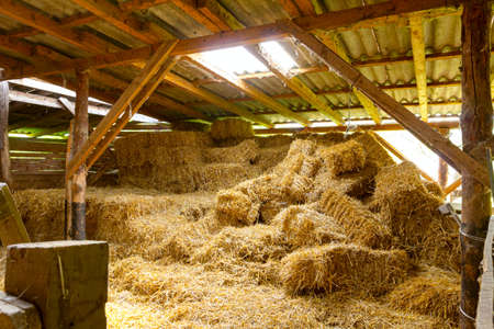 Pile of square bales of straw in ancient, old wooden stable. 版權商用圖片