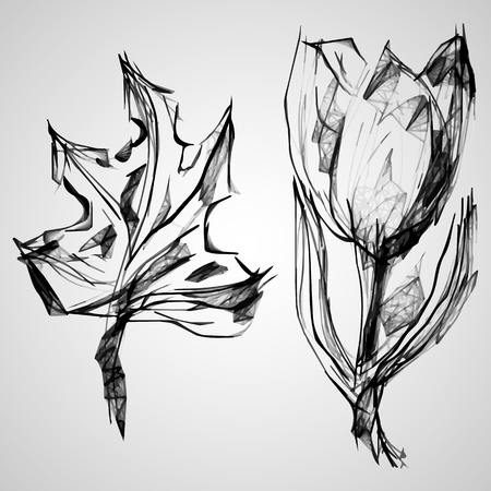 Sketch of maple and Tulip. Drawn using a mobile phone and drawing software.