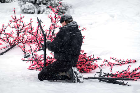 Russia, Nefteyugansk, December 28, 2019: the eve of Christmas. A man collects a decorative led Sakura tree of pink color. He sits on his haunches in the snow. Copy space.