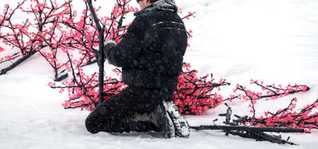 The eve of Christmas. A man collects a decorative led Sakura tree of pink color. He sits on his haunches in the snow. Copy space. Banco de Imagens