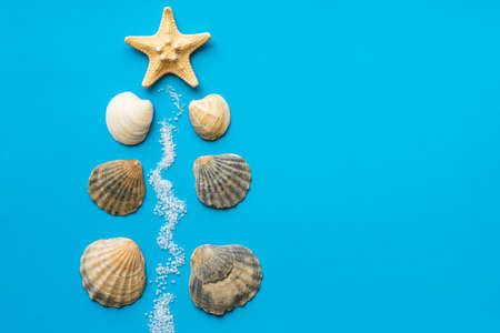 Imitation Christmas tree made of sea shells on a blue background. The image is on the left. Copy space. Reklamní fotografie