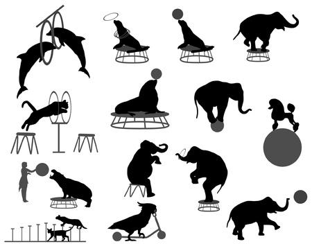 silhouettes elephants: espect�culo de circo