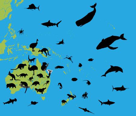 oceania: Animals of Australia and Oceania