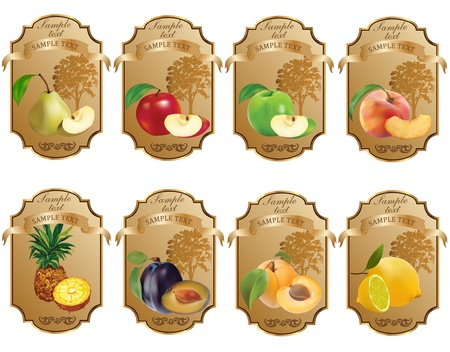 apricots: Label for product Illustration
