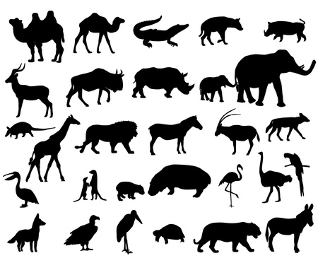 Animals of Africa Vectores