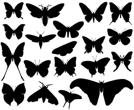 silhouette papillon: papillon Illustration