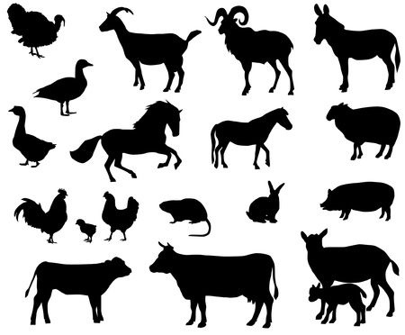 lepre: Animali da fattoria Vettoriali