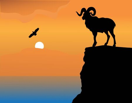 mountain goat on a rock Stock Vector - 14846090