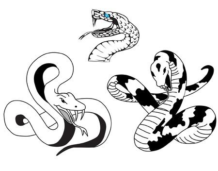 black snake: snake