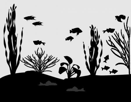 aquarium Фото со стока - 16298572