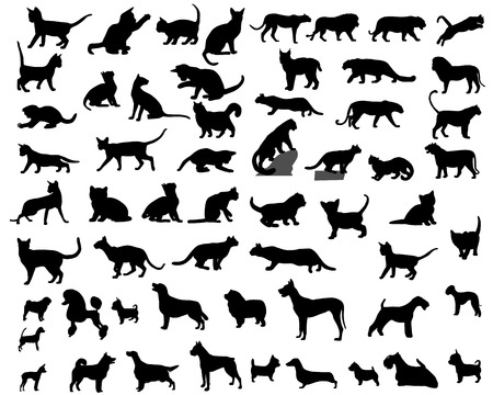 Collection of silhouettes of domestic animals - cats and dogs Çizim