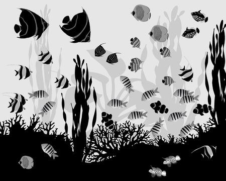 Coral vis Stock Illustratie