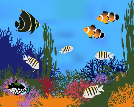 Verschillende soorten koraal vissen. Kleur vector illustratie.