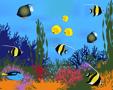 Different species of coral fish. Color vector illustration. Illustration